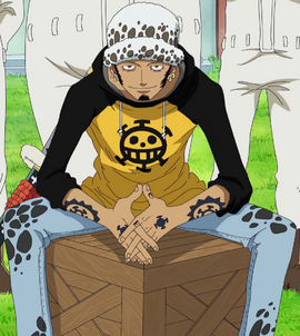 Trafalgar D. Water Law before the timeskip in the anime