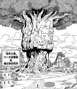 Arbre de la Cognition Manga Infobox.png
