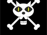 Piratas Gato Negro