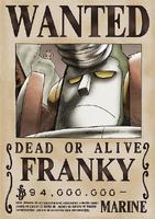 Franky seconda taglia