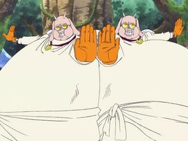 Хотори и Котори в аниме