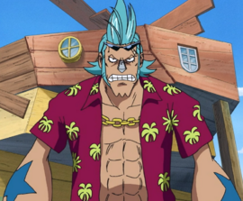 Franky before the timeskip in the anime
