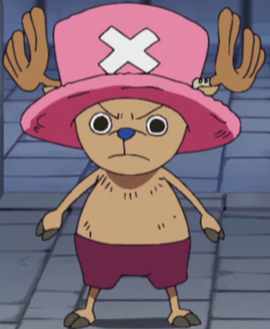 Tony Tony Chopper before the timeskip in the anime