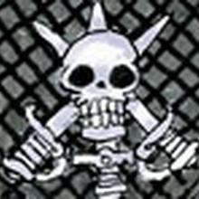 Zoro's Post Timeskip Jolly Roger 2.png