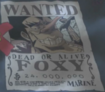 Foxy's Wanted Poster.png