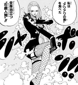 Awa Awa no Mi Manga Infobox.png