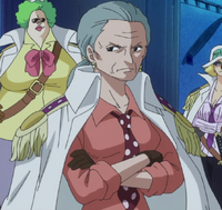 Tsuru 63 anni