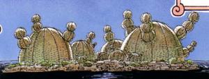 Cactus Island.png