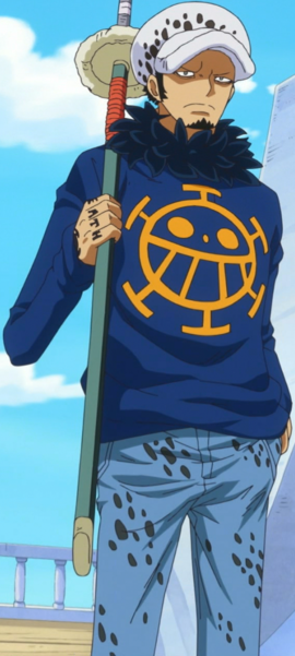 Trafalgar D. Water Law after the timeskip in the anime
