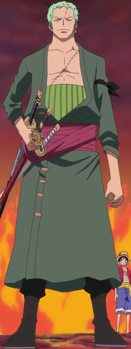 Roronoa Zoro after the timeskip in the anime
