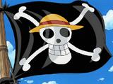 Piratas de Sombrero de Paja/Aliados