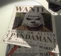 Taglia Pandaman