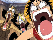 Luffy, Usopp und Sanji bekommen Panik