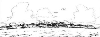 Острова Гекко