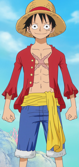 Monkey D. Luffy after the timeskip in the anime