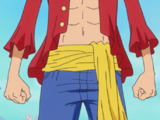 Monkey D. Luffy/Abilities and Powers