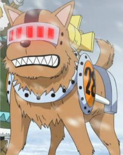 Taroimo in the anime