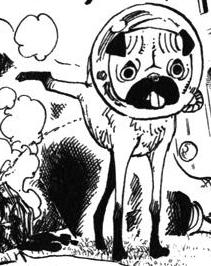 Saru in the manga