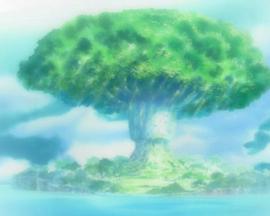 Arbre de la Cognition Anime Infobox.png
