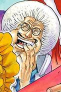 Sengoku Post Timeskip Manga Color Scheme