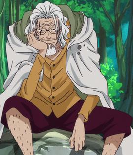 Silvers Rayleigh antes del salto temporal en el anime