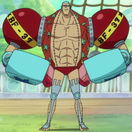 Franky after the timeskip in the anime