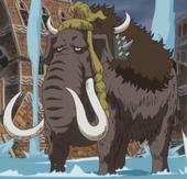 Słoń-słoniowoc, model mamuci