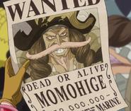 Peachbeard's Wanted Poster