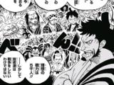 Alianza Ninja-Pirata-Mink-Samurái