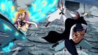 Marco e Vista colpiscono Akainu