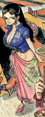 Nico Robin after the timeskip in the manga