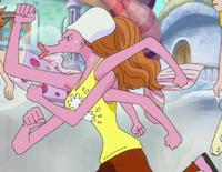 Octopako secondo schema anime