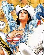 Alvida Manga Color Scheme