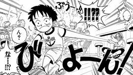 Gomu Gomu no Mi Manga Infobox.png