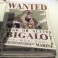 Bigalo's Wanted Poster.png