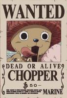 Chopper taglia