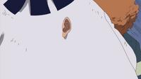 Fior Fior orecchio