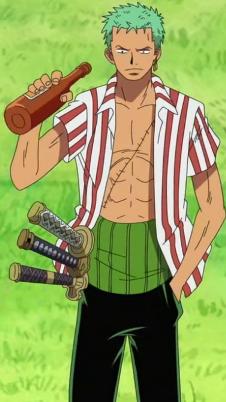 Roronoa Zoro before the timeskip in the anime
