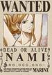Actual cartel de Nami.png