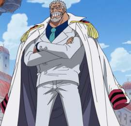 Monkey D. Garp in the anime