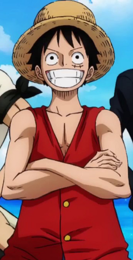 Monkey D. Luffy before the timeskip in the anime