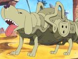 Pies-piesowoc, model jamniczy