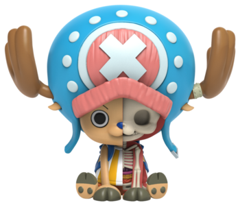 XXRAY Plus: Chopper