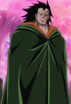 Monkey D. Dragon in the anime