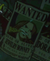 Jewelry Bonney's Wanted Poster
