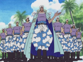 Bérets Blancs Anime Infobox.png
