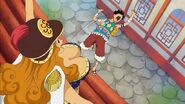Luffy vs Aphelandra2