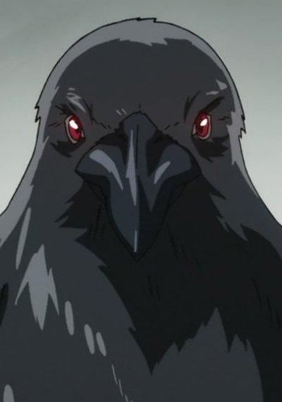 Kakin Kakin no Mi, Model: Crow