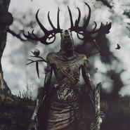 Leshy Witcher (2)