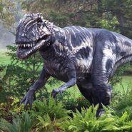 Megalosaurus-2 (2)